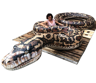 Giant Carpet Python - Playground sculpture