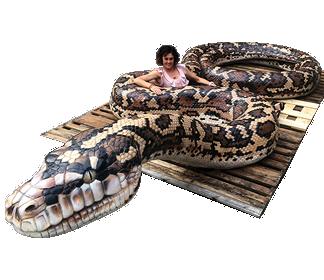 Giant Carpet Python - Playground sculpture