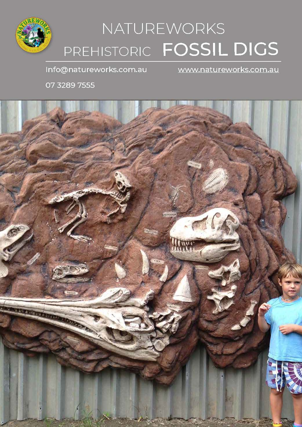 Quality Fossil digs for Childcare centres - schools, museums, outdoor playgrounds - Prehistoric theming