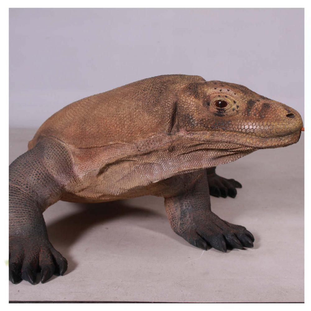 Animals Reptiles Lizards  Komodo Dragon Natural Product Image V px px