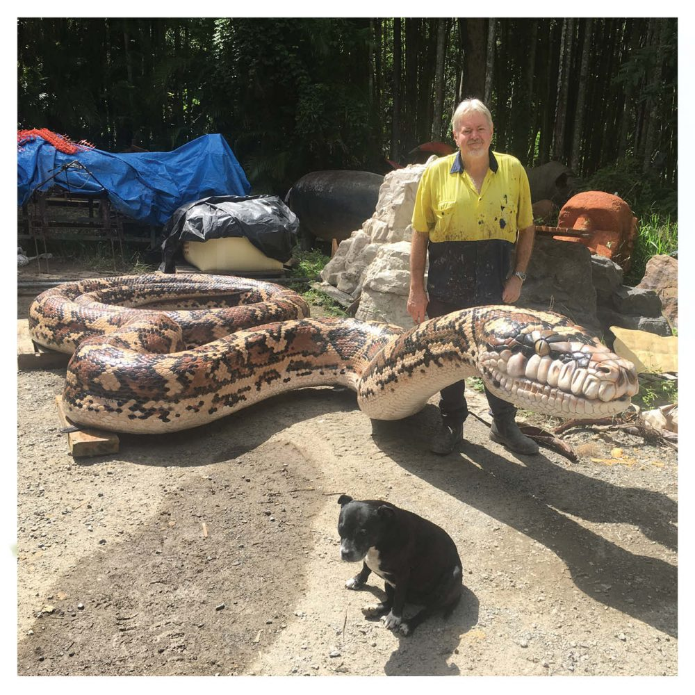 Animals Reptiles Snakes  Giant Carpet Python Snake Rear View Product Image V px px