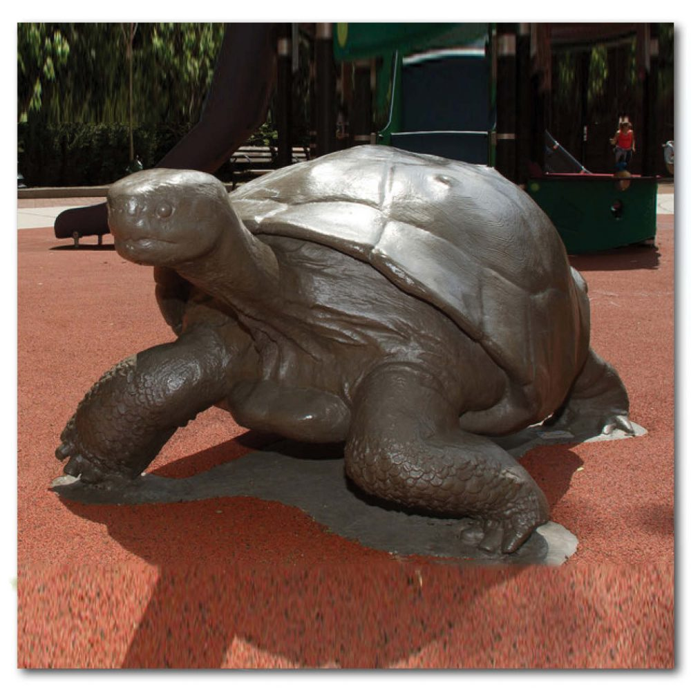 Animals Reptiles Tortoise Galapagos Bronze Product Image V px px