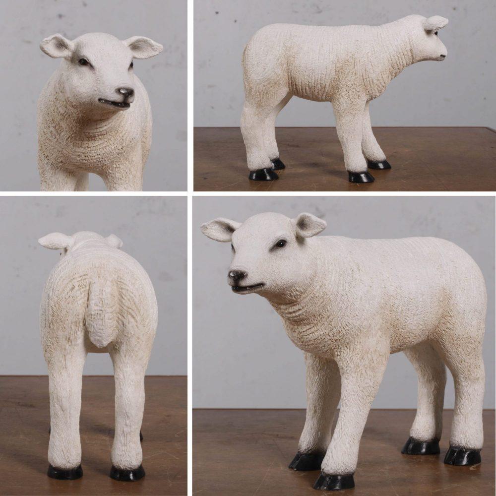 Lamb Texelaarstatue FarmyardProp SmallinStandingPose
