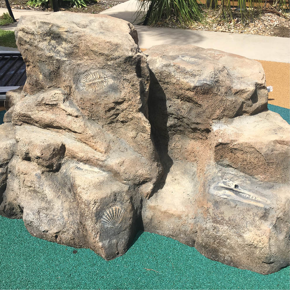 Artificial Rocks with fossils prehistoric