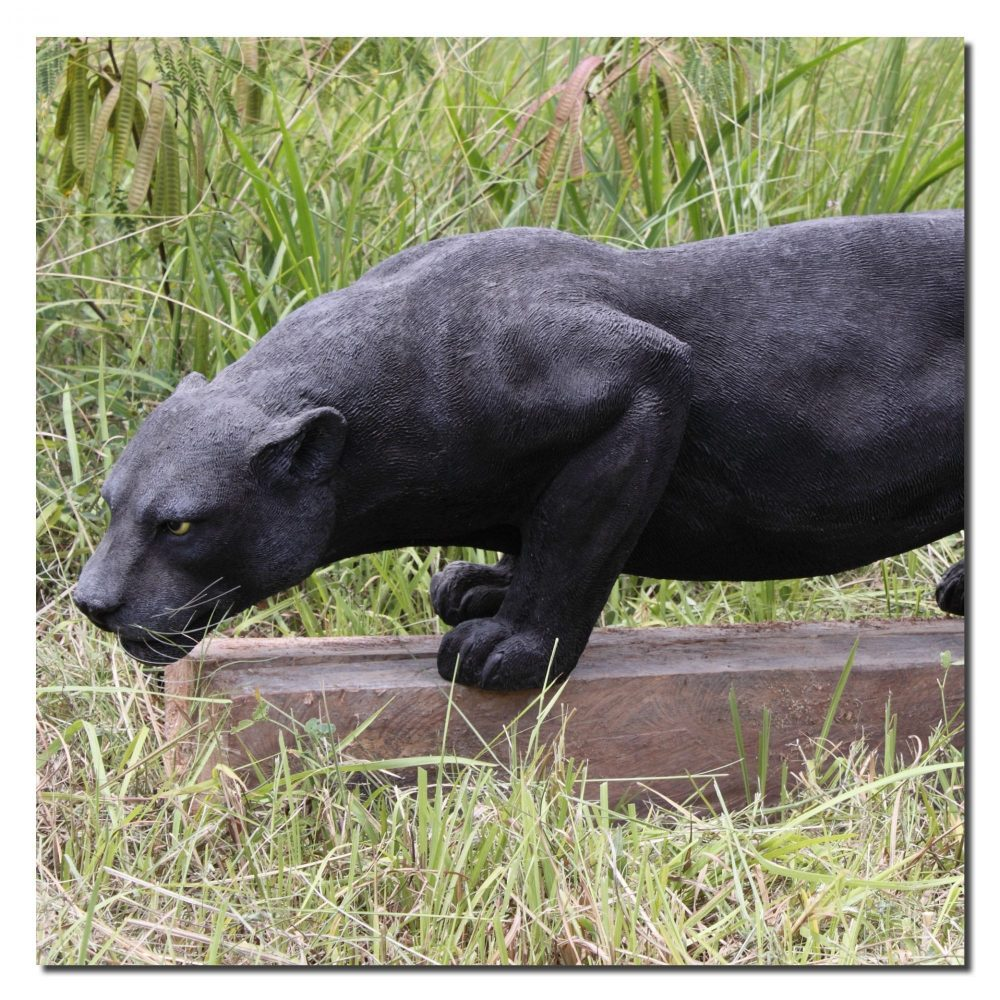 Big Cats Panther Black   Croching Product Image V px px