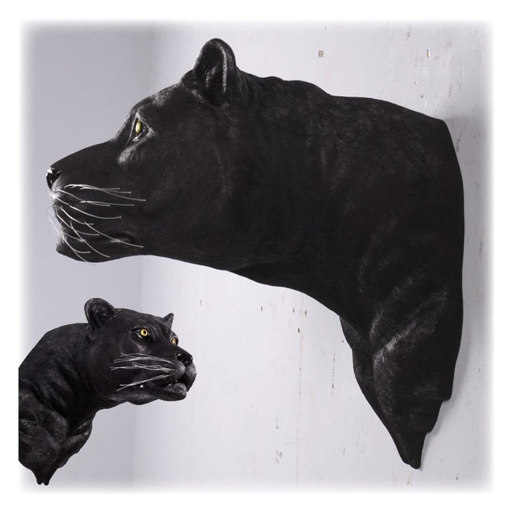 Big Cats - Panther