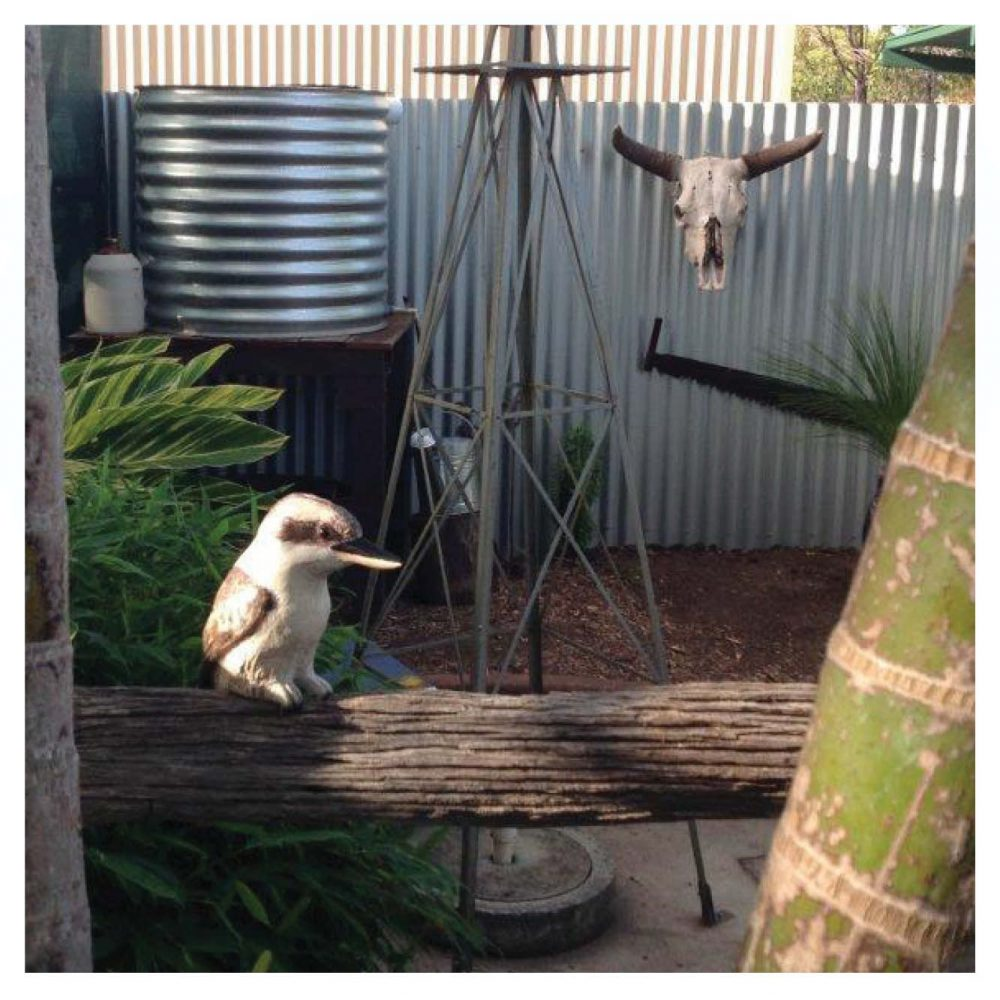 Birds Of Prey Kookaburra Customer Photo outside Product Image  V px px