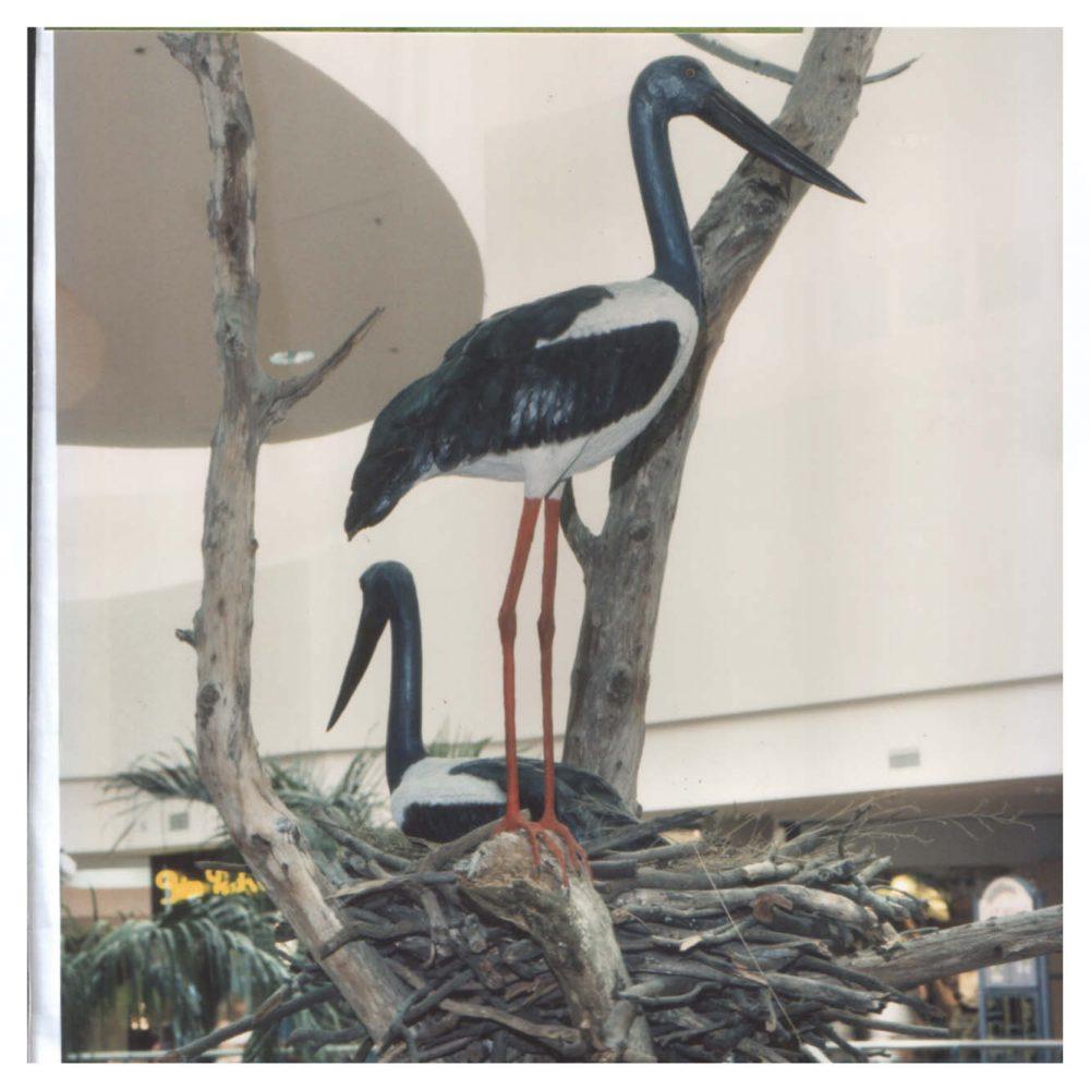 Jabiru - Standing Statue - outside in nest