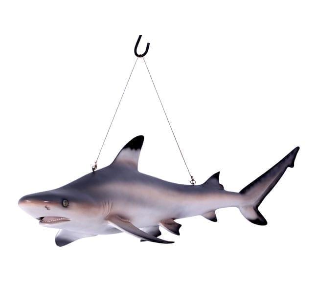 Black Tip Reef Shark Statue