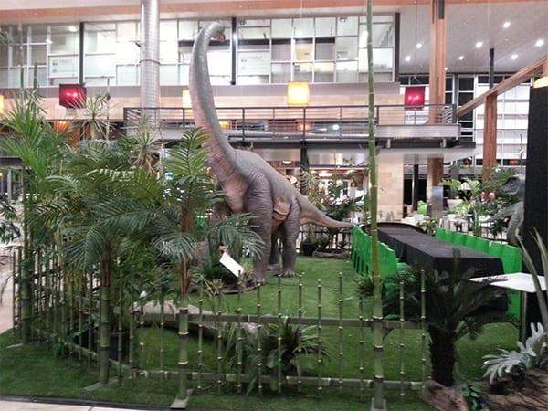 Dinosaur Exhibits & Displays Sets
