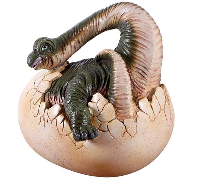 Brachiosaurus Hatching Baby