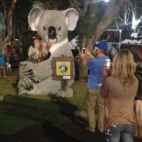 Cuddle the Koala Image Gallery Wizard V