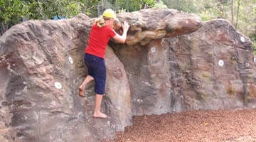 Currumbin Sanctuary Climbing wall
