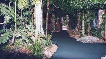 Currumbin Sanctuary Walkway with trees