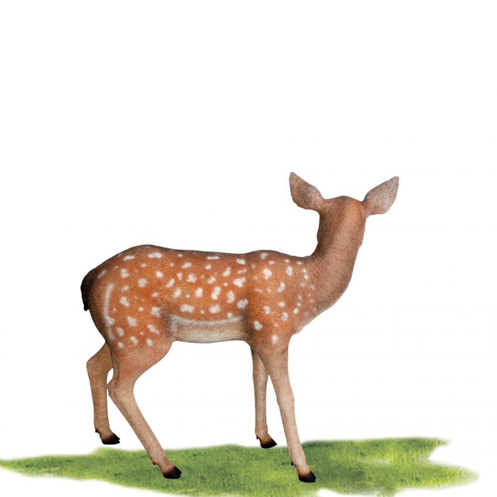 fallow - Deer - fawn sculpture