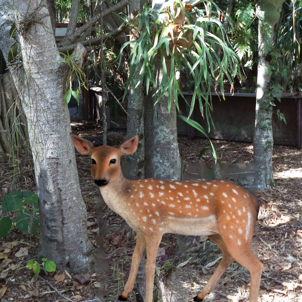 Outside view of Cute deer fawn - statue in standing pose