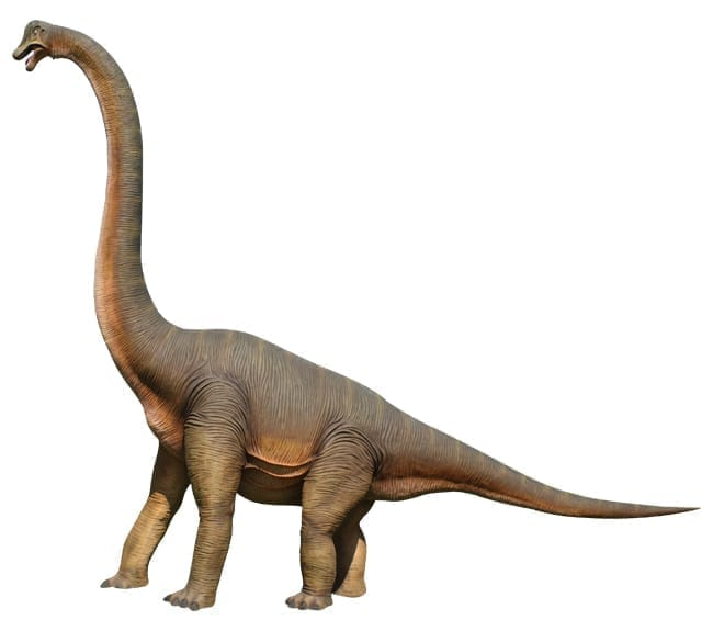 Fibreglass Brachiosaurus Dinosaur Statue