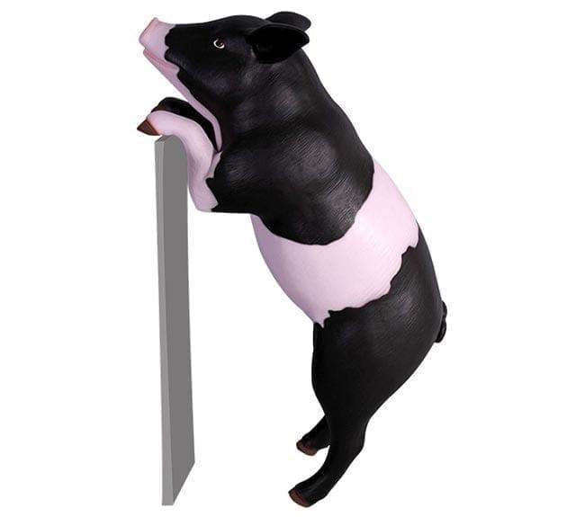 Fibreglass Curious Pig Statue Standing Pink Black