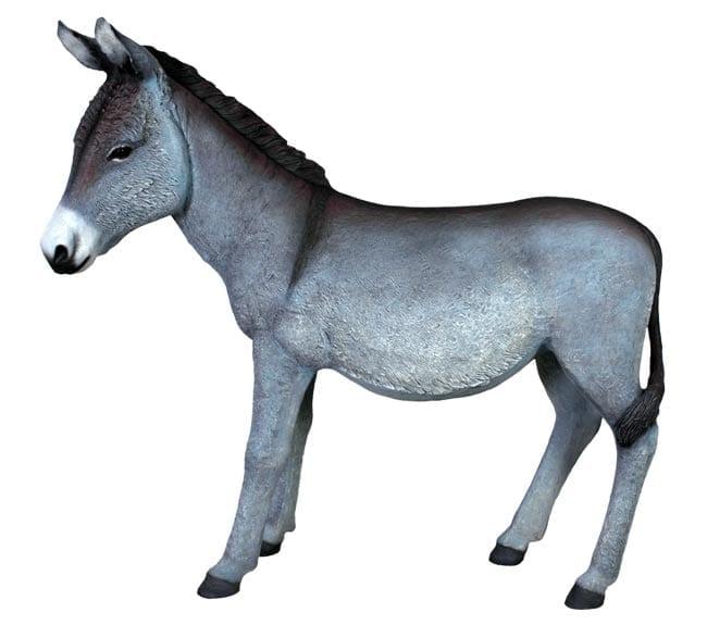 Donkeys & Deers