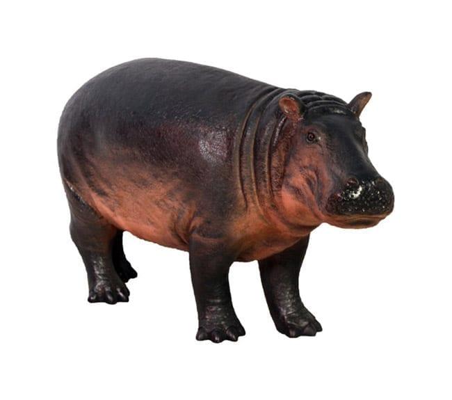 Fibreglass Hippopotamus Calf Statue
