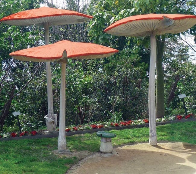 Fibreglass Mushroom Umbrella Set