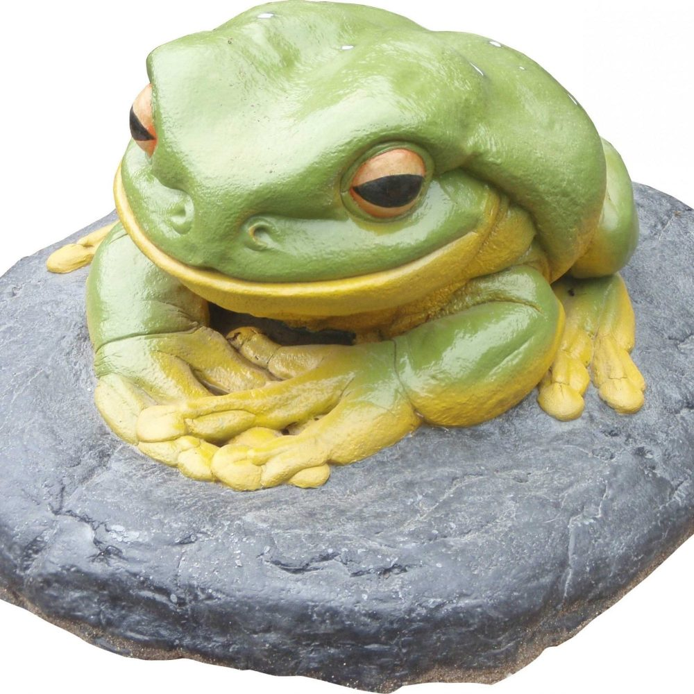 Frog Green Tree On Rock Giant ROCK   scaled scaled