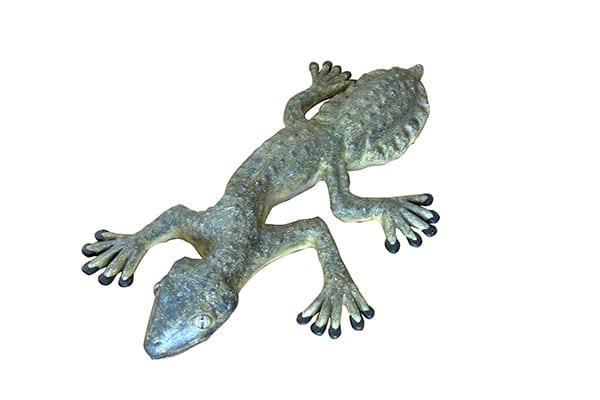Gecko Giant Leaf Tailed