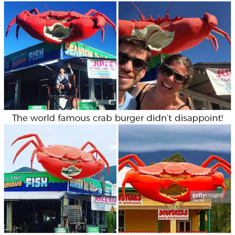 Giant Crab On Post Cardwell Visitors
