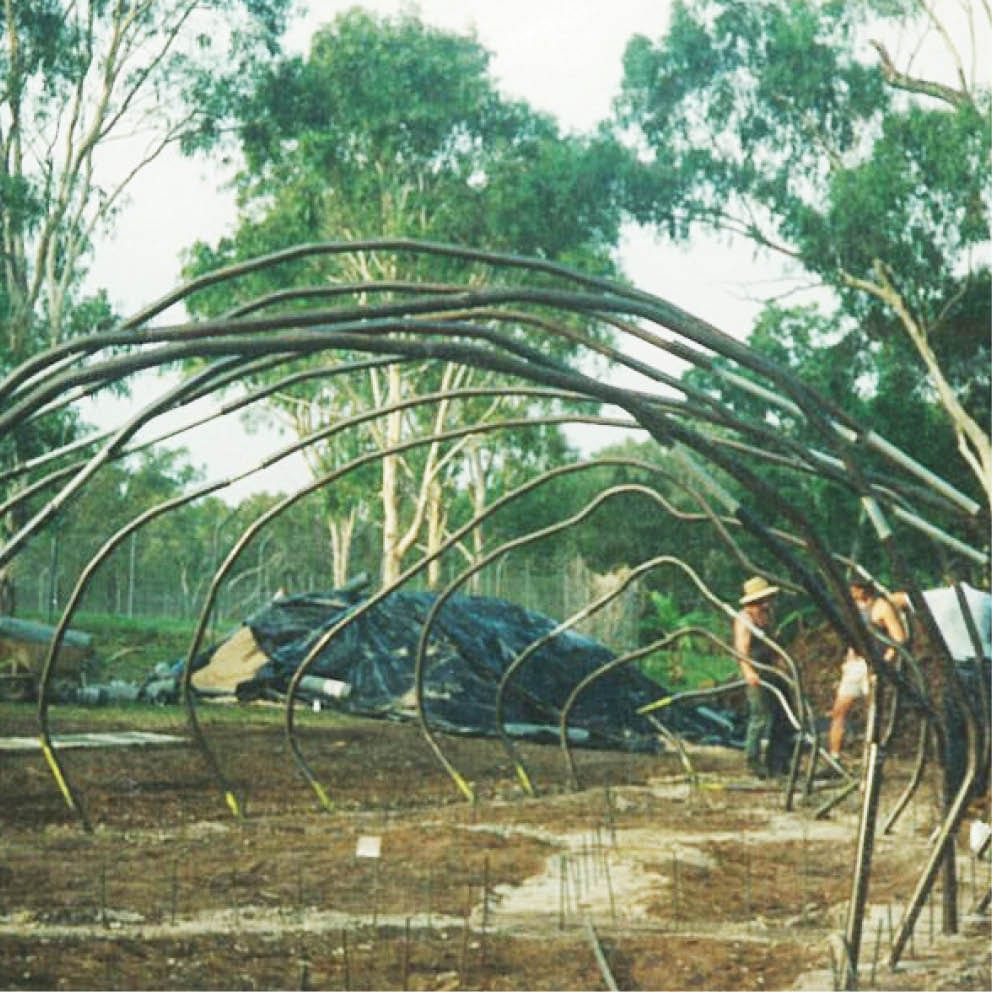Giant Dugong Front View Showing armature steel