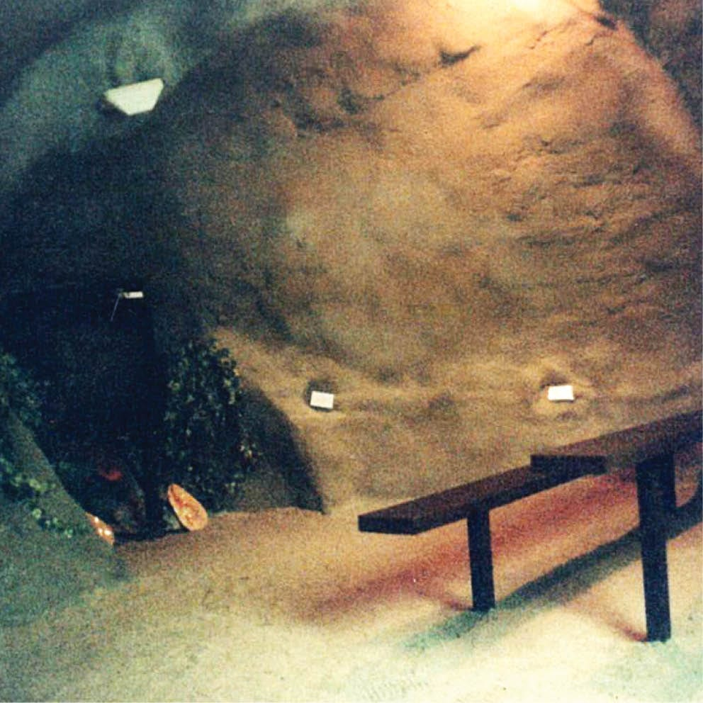 Giant Dugong inside showing theatre