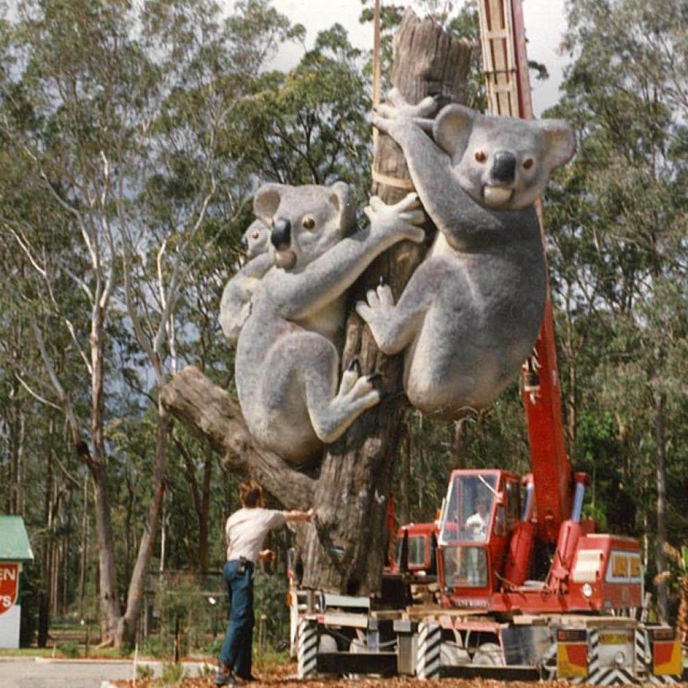 Giant Koalas on Tree Stump During installation with crane