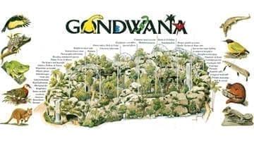 Gondwana Rainforest Sanctuary Map of Site