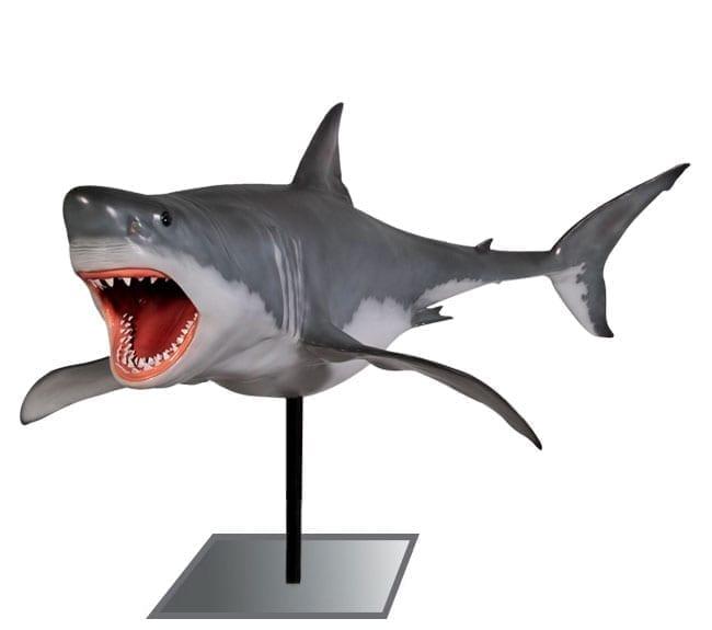Great White Shark on Pedestal