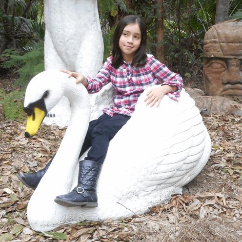 Larger Than Life size Birds English Swan Image