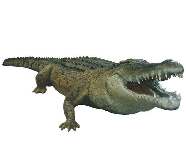 ftCrocodilesculpture