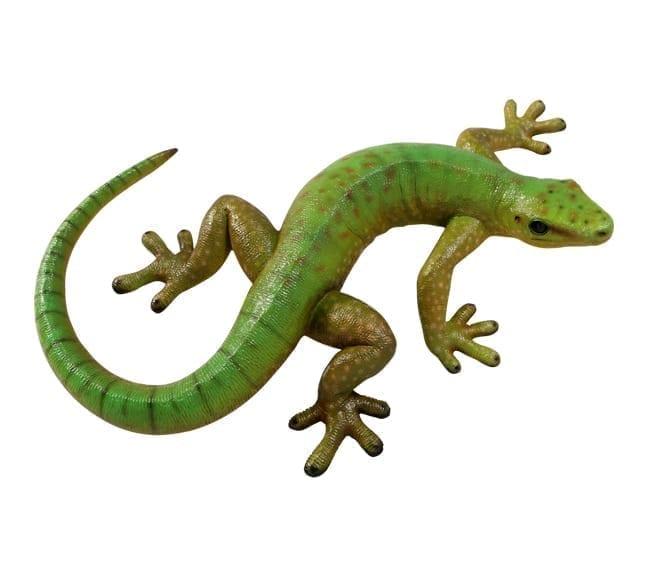 Madagascar day gecko repolica