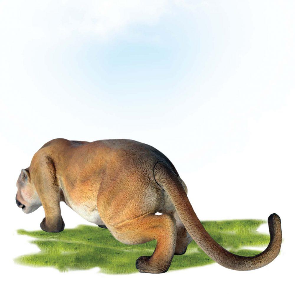 Fibreglass Cougar Sculpture Crouching.- Rear View