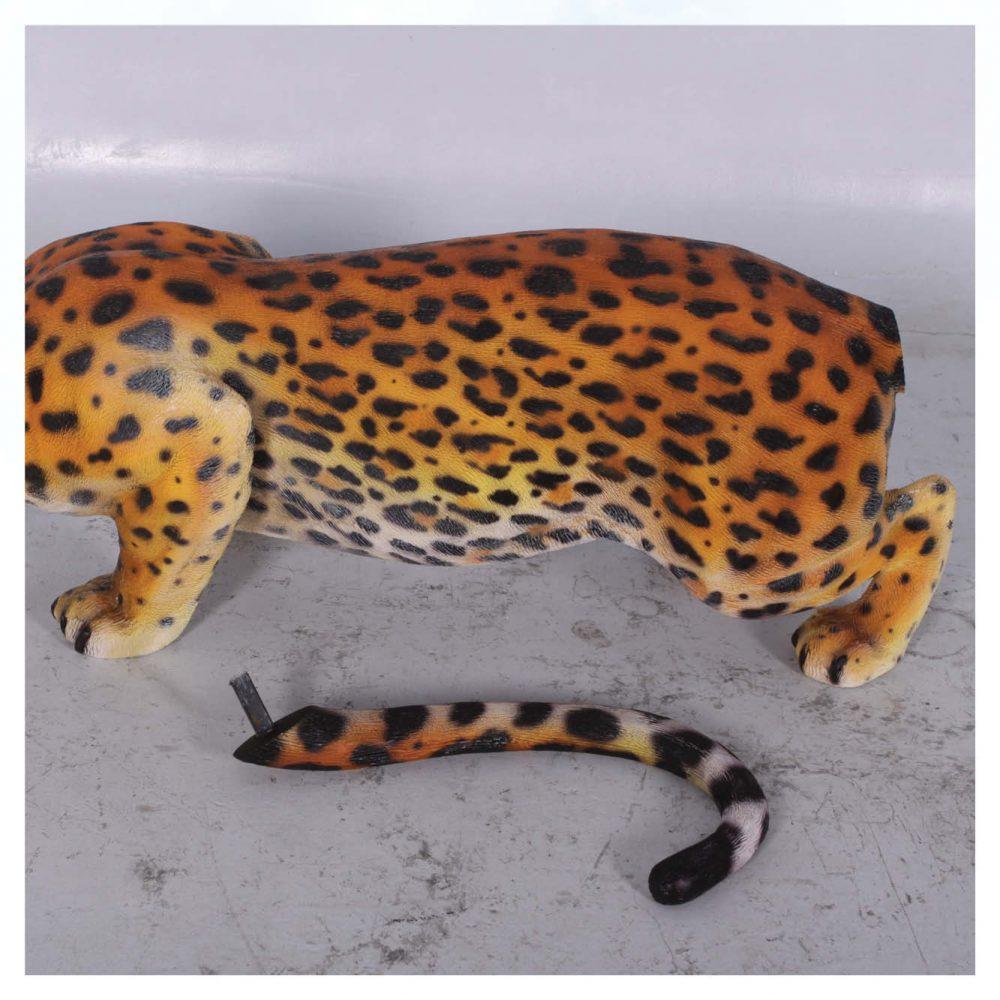 Jaguar_Crouching_080110