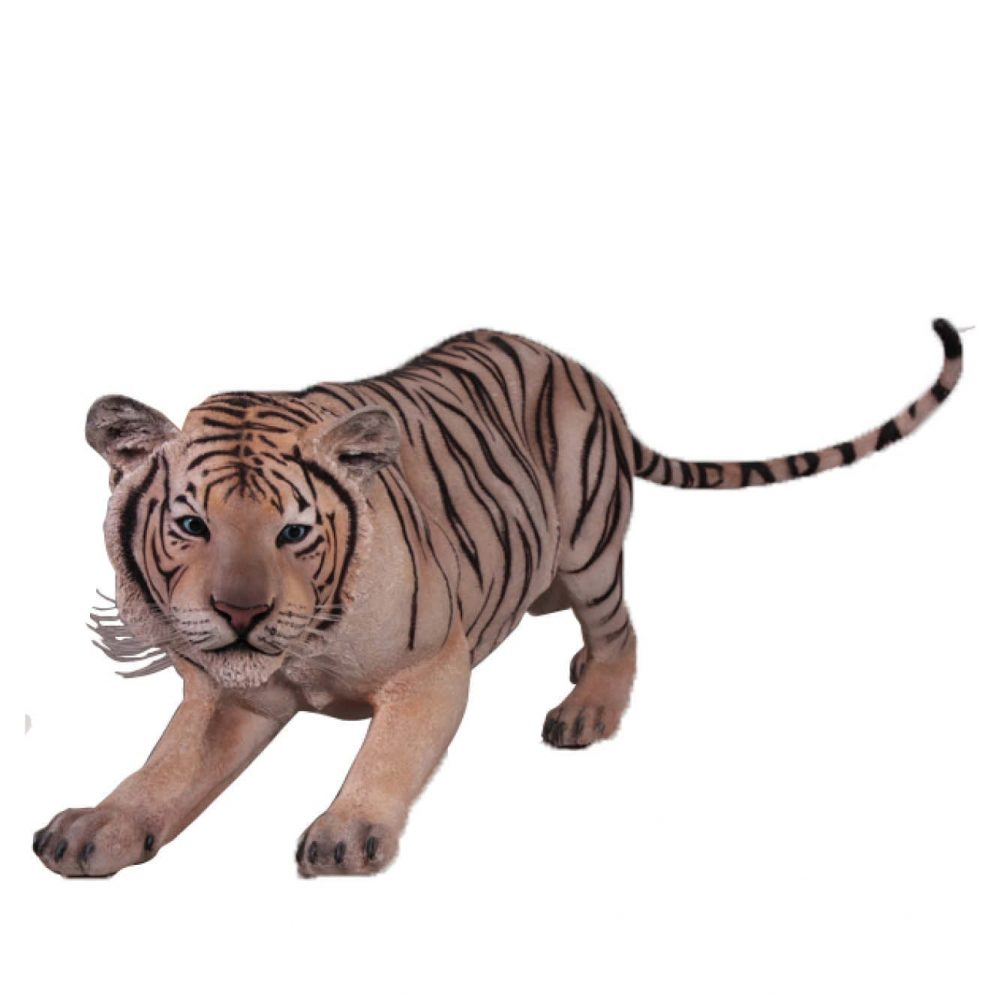 Mammals Big Cats Siberian Tiger crouching Product Image Front view V px px