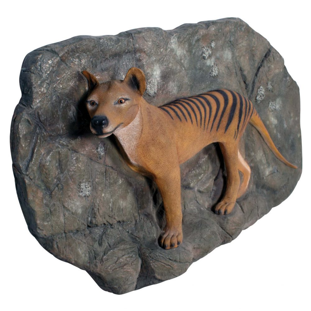 Thylacine- Tasmanian Tiger on Plinth- Wall mount