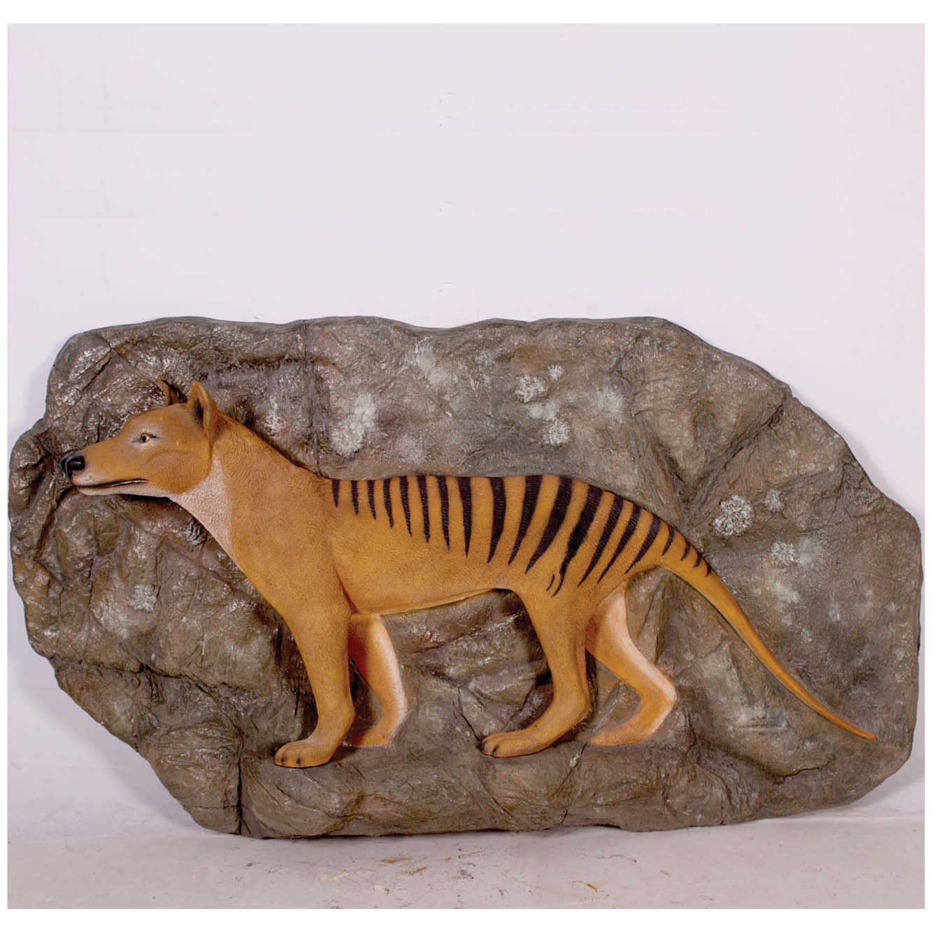 Tasmanian Tiger On Rock Plinth