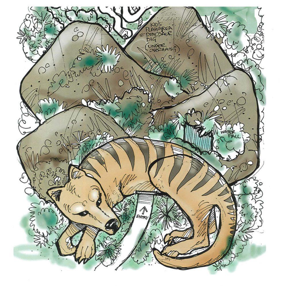 Thylacine - Tasmanian tiger - Larger Than Life-size