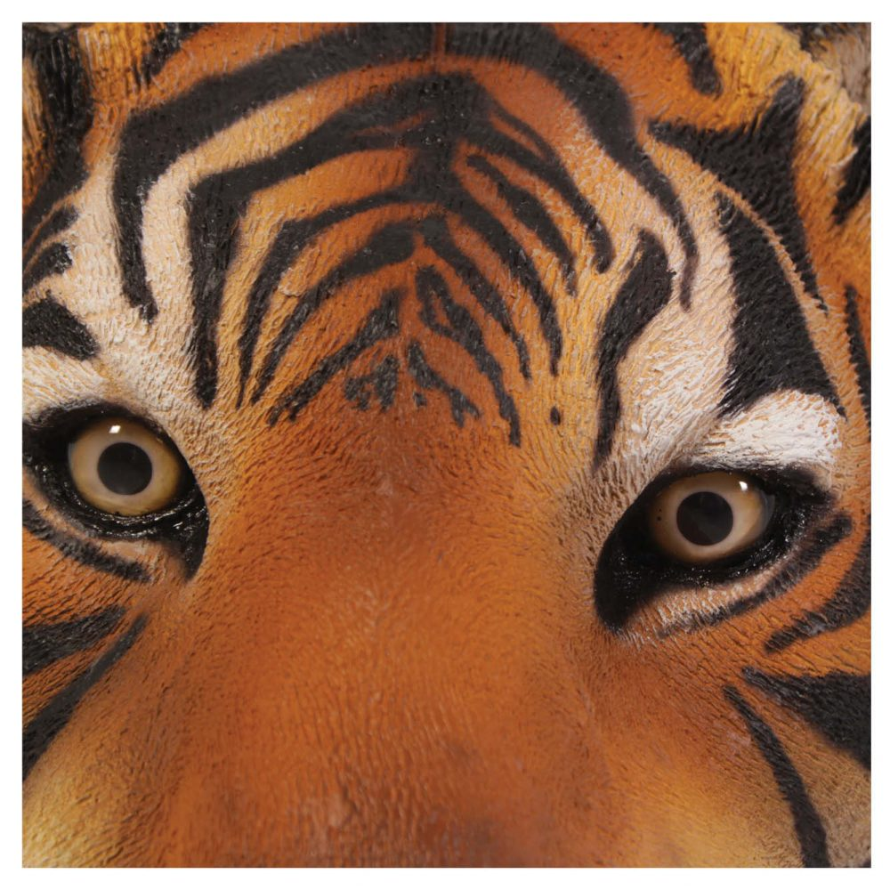 Bengal Tiger Crouching Statue - Close up of eyes