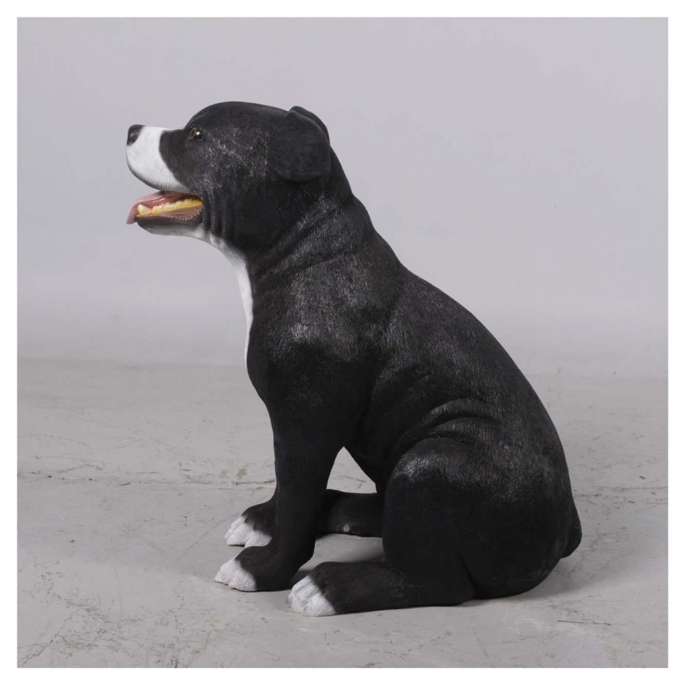 Mammals Domestic Pets English Staff Bull Terrior Black side view Product Image V px px