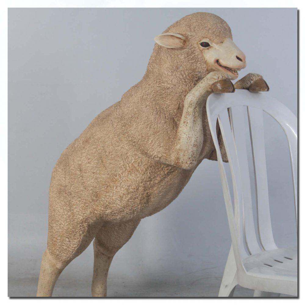 Mammals Farm animals Sheep Merino Curious Product Image V px px