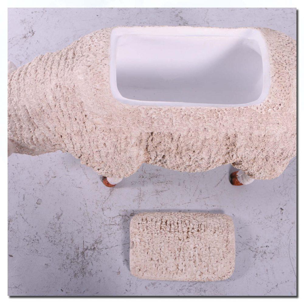 Mammals Farm animals Sheep Merino Esky Product Image V px px