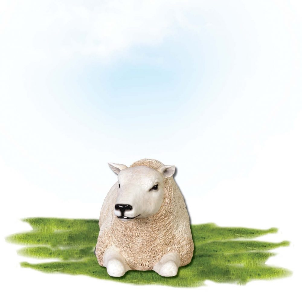 Mammals Farm animals Sheep Texlaar Ewe Lying White Small Product Image V px px