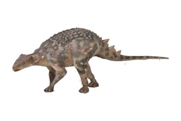 Minmi Australian Ankylosaur Dinosaur