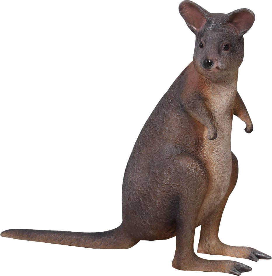 Pademelon Red Necked
