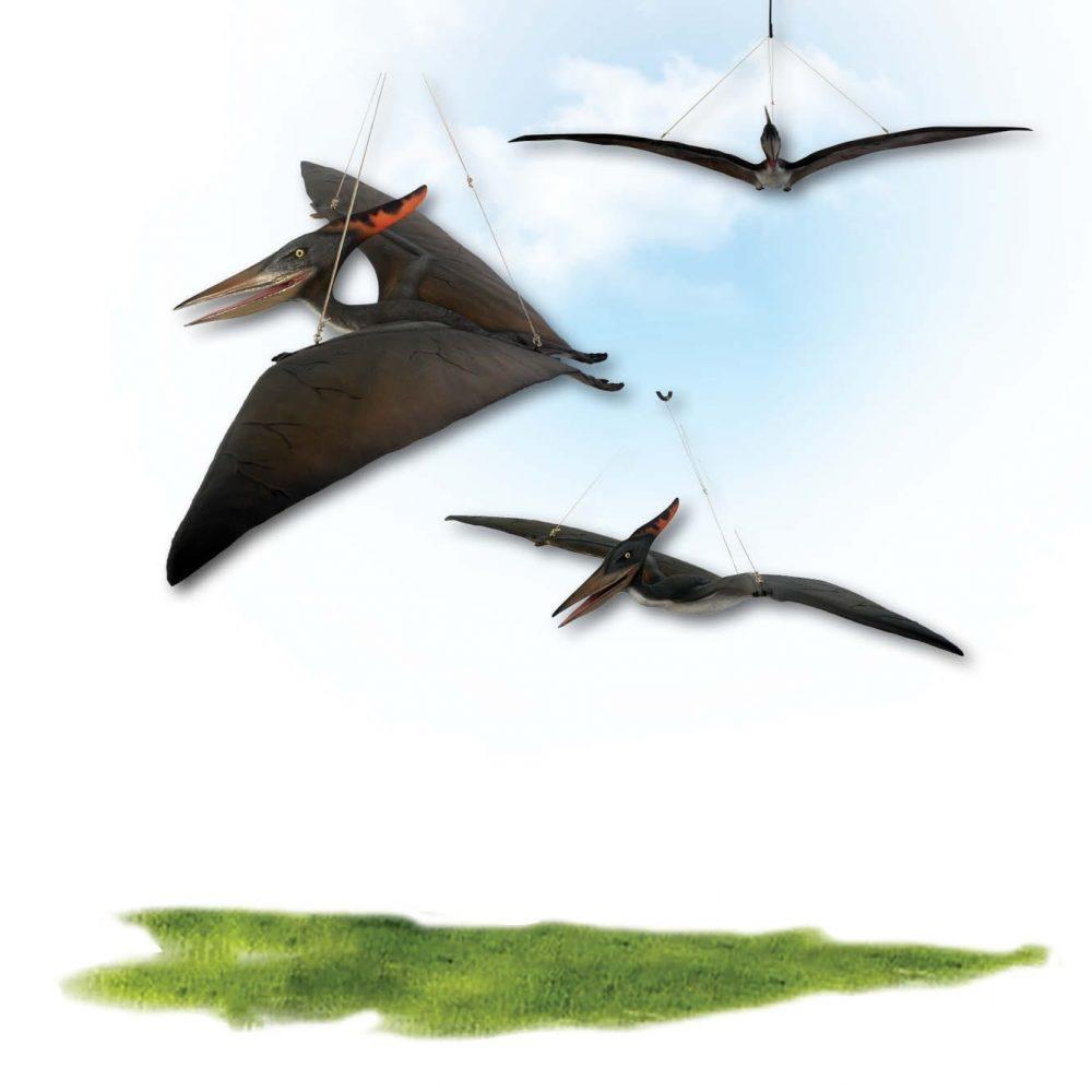 Prehistoric Dinosaur sculpture Pteranodon hanging Definitive Product Image V px px